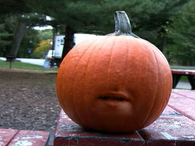 The Pumpkin Who Was An Asshole 1